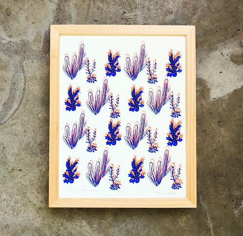 Double Century Cactus | Art Print