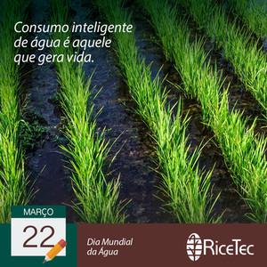03 22_03 10211 RICETEC - post datas come