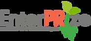 enterprize logo (2).png