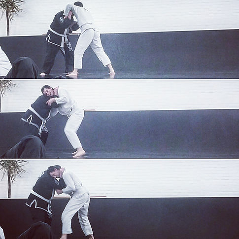 Martial arts albany