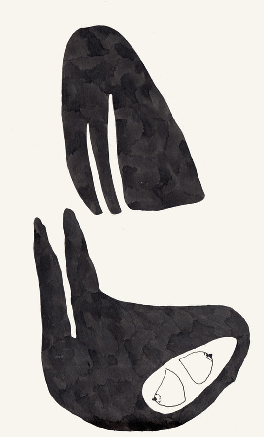 fossils drawing series