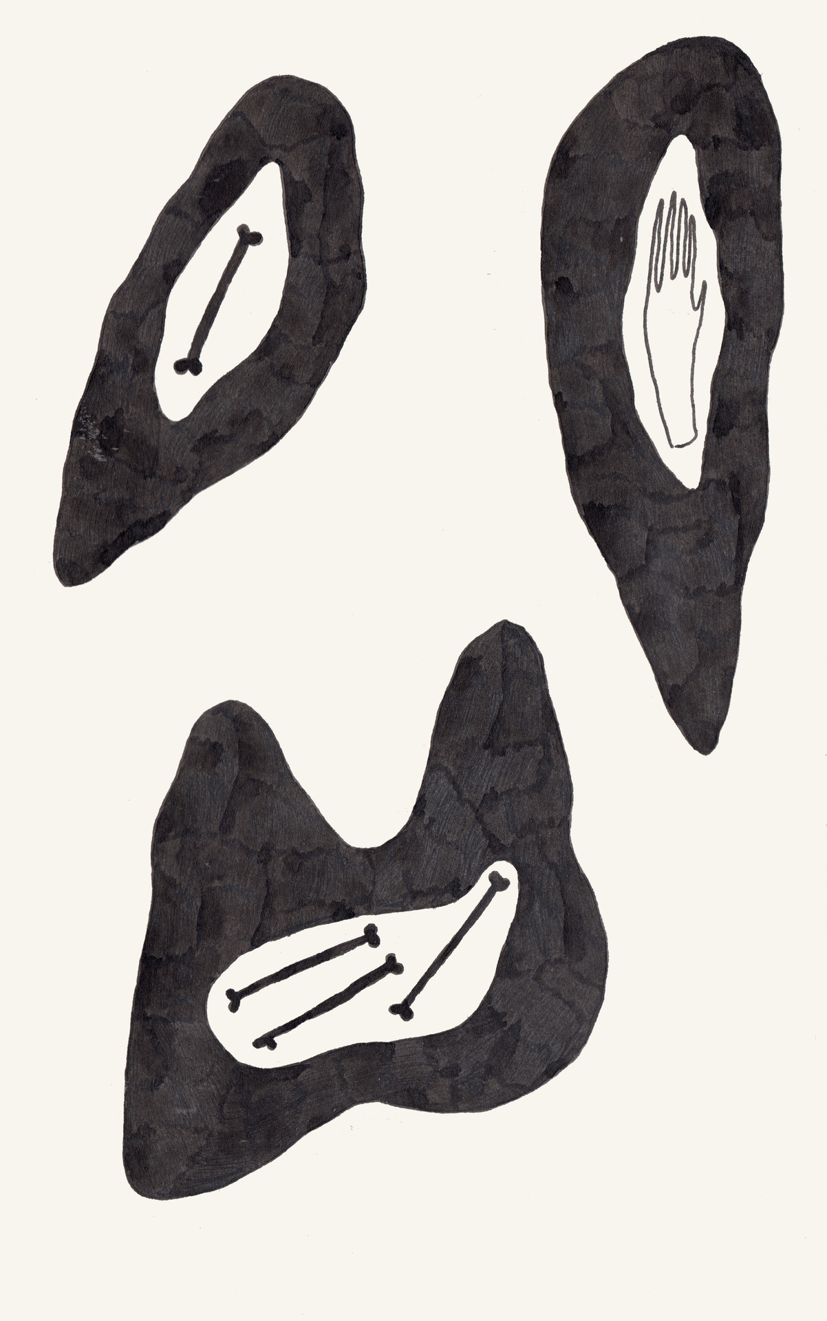 fossils drawing series 4