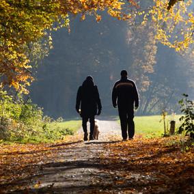 The Benefits of a Health & Welfare LPA