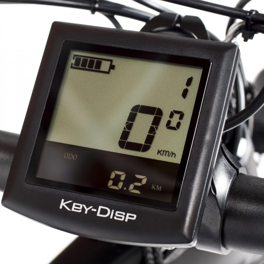 bicicleta-electrica-mtb-dune (4).jpg