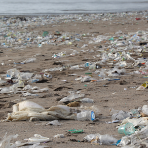 10 Tipps um Plastik im Alltag zu vermeiden