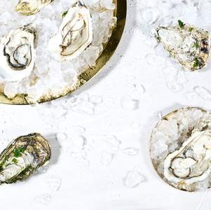 Austern auf Eis