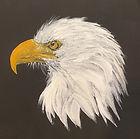 Freedom, Acrylic on canvas, 12_X12_ $100