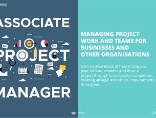 Associate Project Manager Level 4