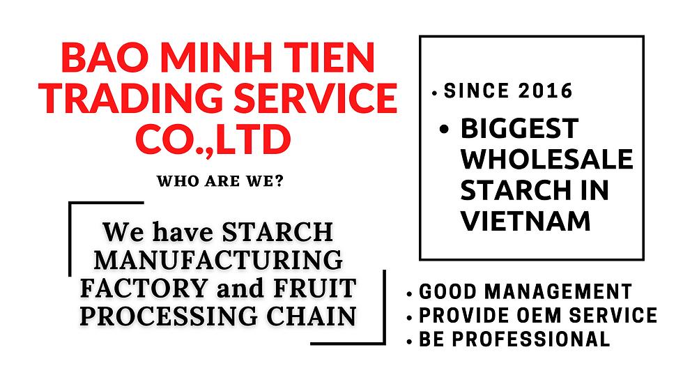 BAO MINH TIEN TRADING SERVICE CO.,LTD (1).png