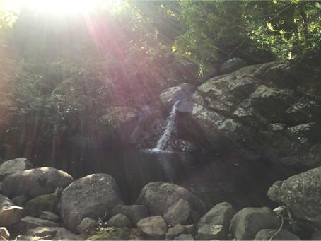 Source de île Maurice (Otentic Montagne)