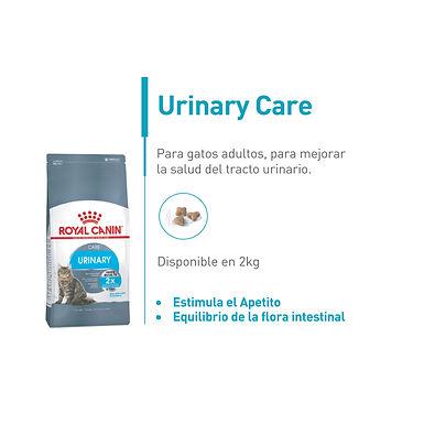 Urinary Feline Care