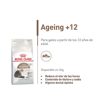 Ageing +12