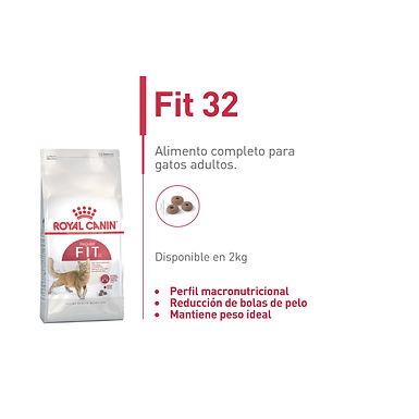 Feline Fit 32