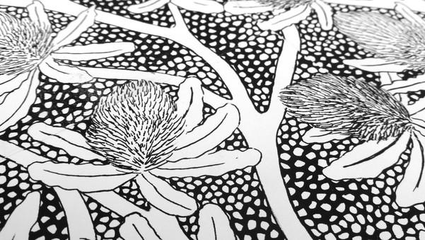 Banksia9.jpg