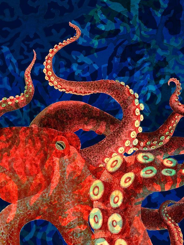 Octopus_Entwurfdefkl.jpg
