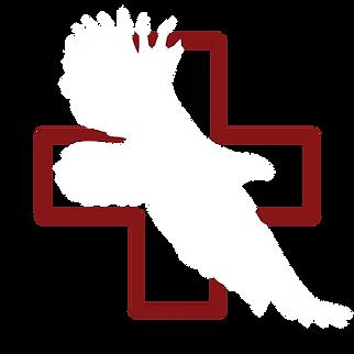 VA-LOGO-WHITE_EAGLE-01.png