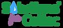 Solutions-for-Celiac-Logov2-stacked-tran