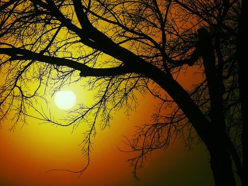 """Glorious Daybreak"""