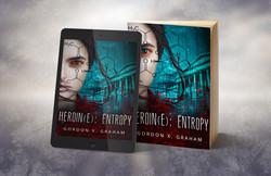 Heroin(e) : Entropy 3-D image