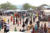 Gov. Zulum discovers fake 550 IDP persons at Maiduguri IDP camp in midnight headcount.