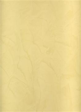 803_Specchio(1)