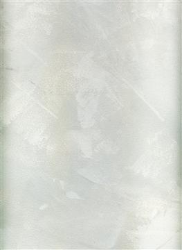 11019_Stucco_Luna_Microplaster