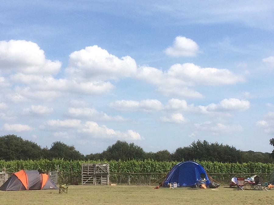 campsiteIMG_15038007