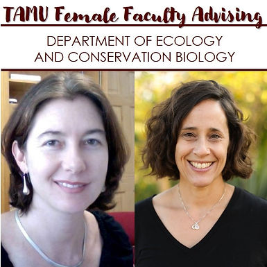 TAMU Female Faculty Advising w/ Department of Ecology and Conservation Biology