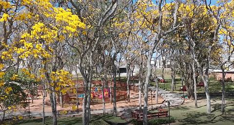 Praça Sitio dos Ipês.PNG
