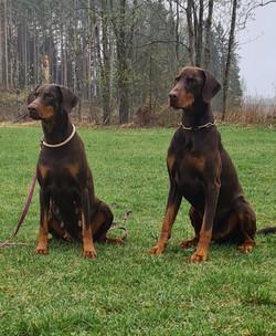 Vilje & Bruno