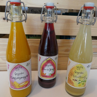 Bio Ingwersaft in drei Geschmacksrichtungen. Kurkuma-Mango Limetten-Honig Karkade-Zimt
