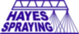 Hayes Logo BLUE.jpg