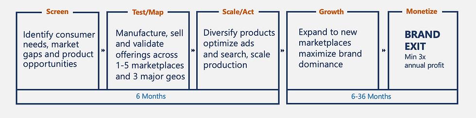 Brandzon microbrand model.png
