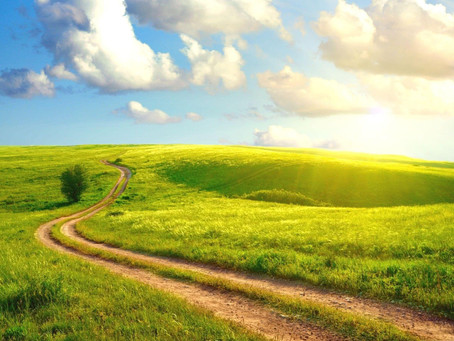 COVID Study: Week 6 - Psalm 16: The Path of Life