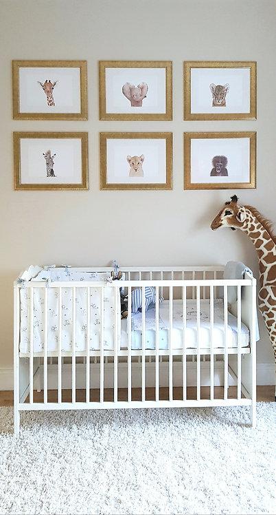 Safari Art Print Collection (Set of 6)