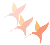 orange_hummingbird_lift.png