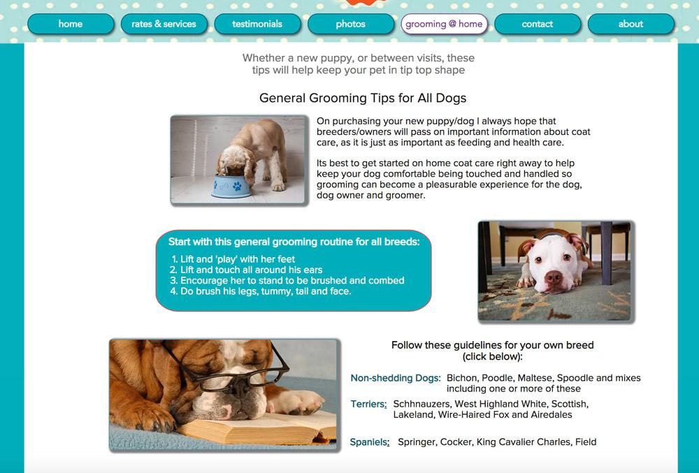 Jo's Pet Grooming