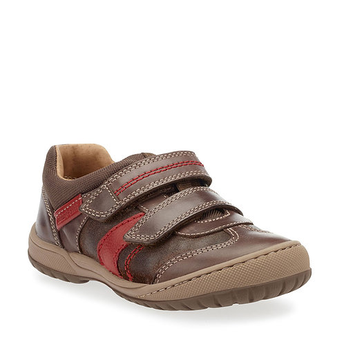 Startrite Flexy Tough Brown Leather Shoes