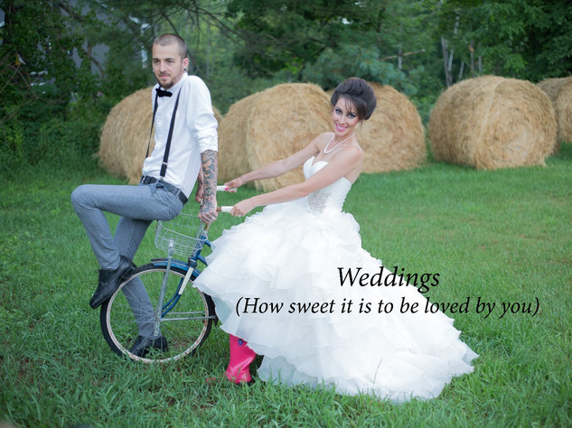 Wedding Portfolio Maine