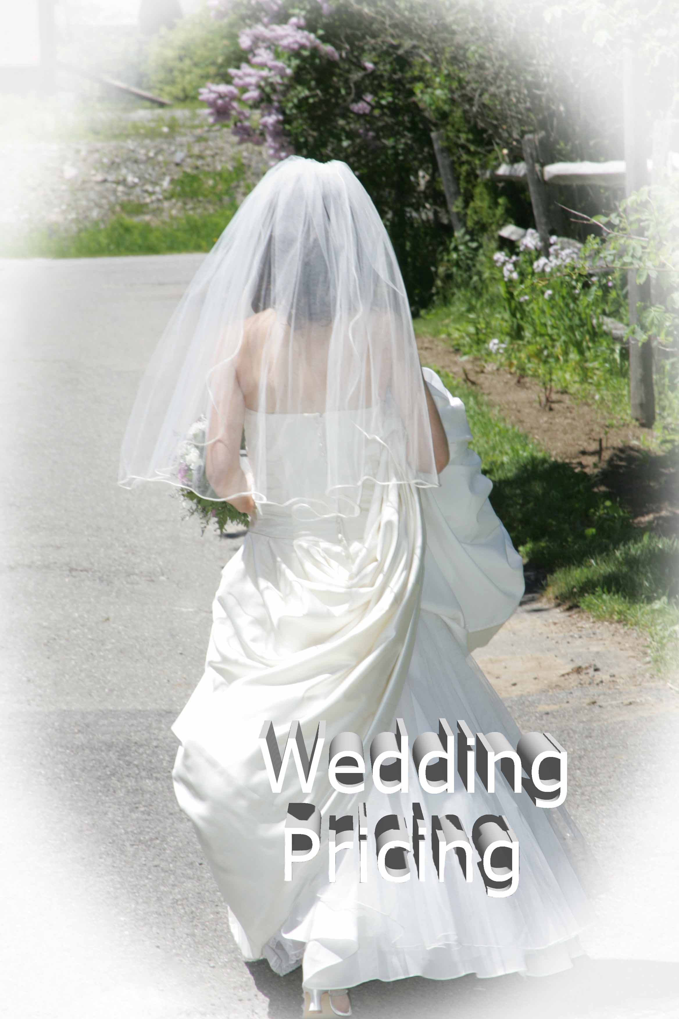 wedwedding