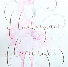 Flamingoes.jpg