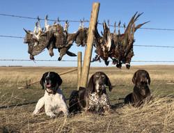 Beulah, Dakota, Anna - Fall 2021 Hunt
