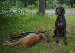 Germany - after a deer hunt with leader Huburtus