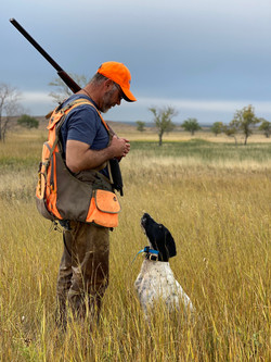 Grouse hunting - 2020