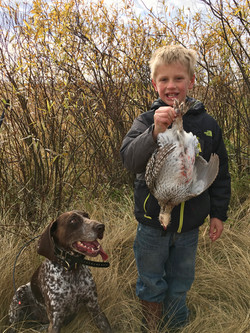 Grouse hunting - 2017