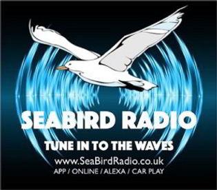 Seabird Radio.jpg