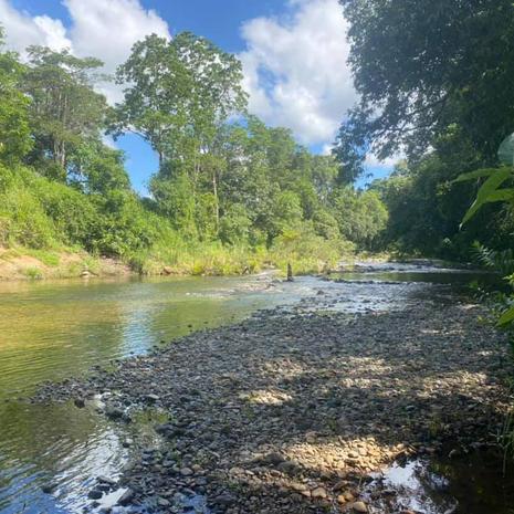 The beautiful Creek.jpg