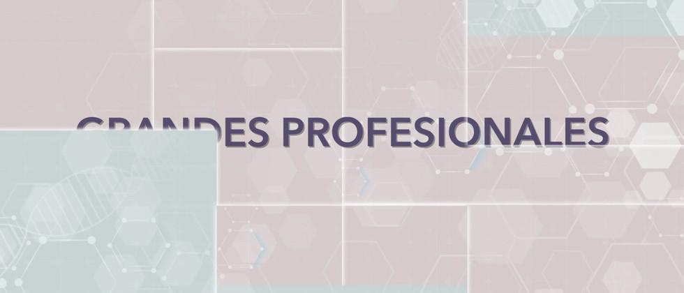 Calama Profesionales 720p.mov