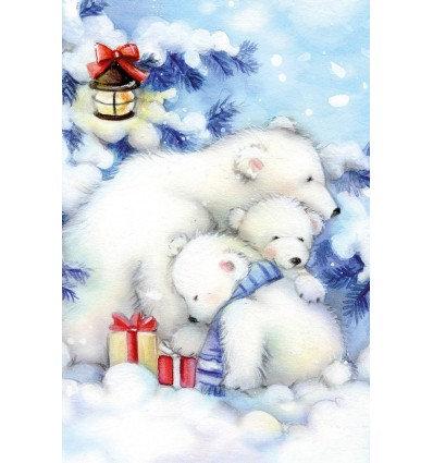 ijsberenfamilie met pakje