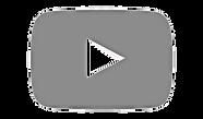 256-2566317_youtube-icon-gray-youtube-si